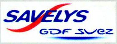 logo savelys